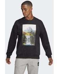 adidas Sportswear Mountain Graphic Sweatshirt - Schwarz