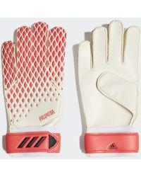 adidas Predator 20 Training Handschoenen - Meerkleurig
