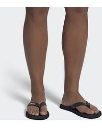 adidas Eezay Flip Flops - Black