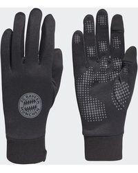 adidas Fc Bayern Field Player Aeroready Gloves - Black