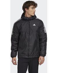 adidas Essentials Insulated Hooded Jacke - Schwarz
