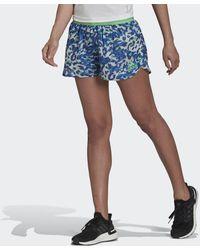 adidas Adizero Split Short - Blauw