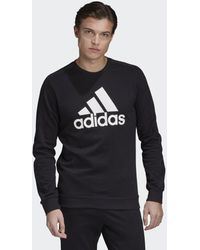 adidas Favorites Graphic Sweatshirt - Schwarz