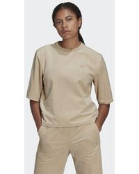 adidas Adicolor Velours Boxy T-shirt - Bruin