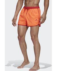 adidas Split Clx Zwemshort - Meerkleurig