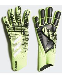 adidas Predator 20 Pro Handschoenen - Groen