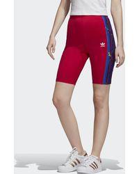 adidas Short Floral Cycling - Rose