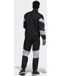 adidas Sportswear Trainingspak - Zwart