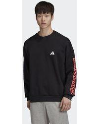 adidas The 3-Streifen Graphic Sweatshirt - Schwarz