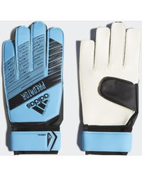 adidas Predator Training Torwarthandschuhe - Blau