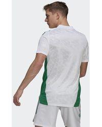 adidas Maglia Home 20/21 Algeria - Bianco