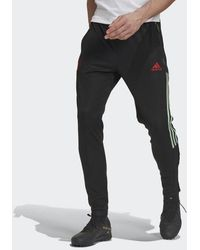 adidas Manchester United Pants - Black