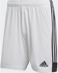 adidas Tastigo 19 Shorts - White