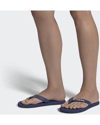 adidas Eezay Flip-flops - Blue