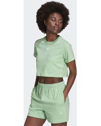 adidas Adicolor Essentials Crop Top - Green