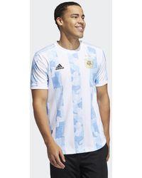 adidas Argentinië Authentiek Thuisshirt - Blauw