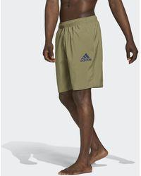 adidas Solid Zwemshort - Groen