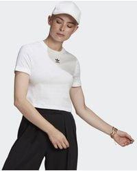 adidas - Adicolor Classics Roll-up Sleeve Crop Top - Lyst