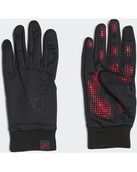 adidas Manchester United AEROREADY Feldspieler-Handschuhe - Schwarz