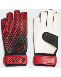 adidas Predator 20 Training Torwarthandschuhe - Rot