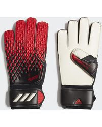 adidas Predator 20 Match Torwarthandschuhe - Mehrfarbig