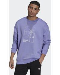 adidas Graphic Sweatshirt - Paars