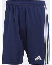adidas - Tiro 19 Training Shorts - Lyst