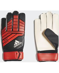 various design new product where can i buy adidas Predator Training Goalkeeper Gloves in Pink - Lyst