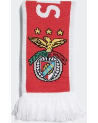 adidas Benfica Scarf - Red