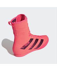 adidas Box Hog 3 Schoenen - Roze