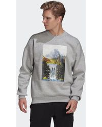 adidas Sportswear Mountain Graphic Sweatshirt - Grau