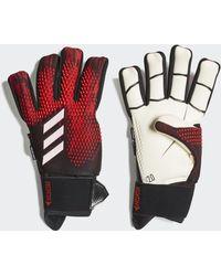 adidas Predator 20 Ultimate Pro Handschoenen - Meerkleurig