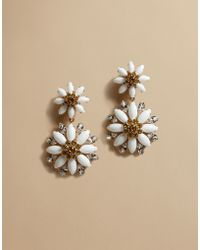 Dolce & Gabbana | Daisy Drop Earrings With Crystals | Lyst