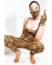 AKIRA Leo Vibes Fashion Gloves - Brown