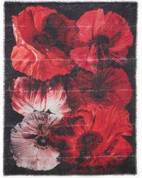 Alexander McQueen Paper Bloom Silk Scarf - レッド