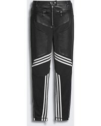 Alexander Wang - Adidas Originals By Aw Leather Trousers - Lyst
