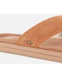 UGG Brookside Suede Flip Flops - Brown