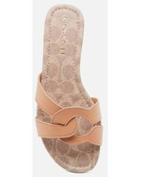 COACH Essie Leather Sandals - Multicolour