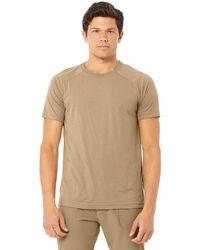 Alo Yoga Alo Yoga Triumph Crew Neck T-shirt - Brown
