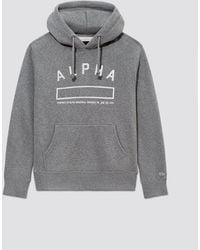 Alpha Industries Alpha Property Hoodie - Gray