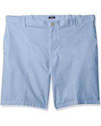 IZOD Mens Flat Front Solid Oxford Short