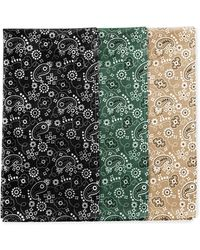 Perry Ellis Assorted Color 3 Pack Bandanas - Green