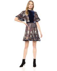 Rebecca Taylor - Short Sleeve Clip & Velvet Dress - Lyst