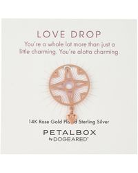 Dogeared 'petal Box' Rose Gold-plated Love Drop Heart Token Charm - Multicolor