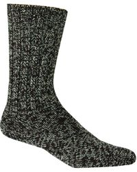 Woolrich Adult's Merino Solid Ragg Wool Sock - Multicolor