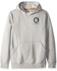 Carhartt Force Delmont Graphic Hooded Sweatshirt - Gray