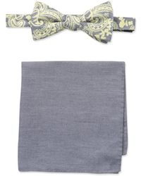 Tommy Bahama 100% Silk Bow Tie & Solid Pocket Square Set - Yellow