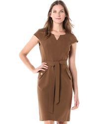 Kasper Petite Stretch Crepe Belted Waist Dress - Brown