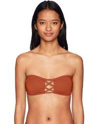 O'neill Sportswear Salt Water Solids Bandeau Bikini Top Swimsuit - Brown