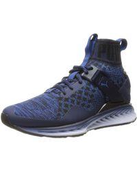 PUMA Ignite Evoknit Fade Cross-trainer Shoe - Blue